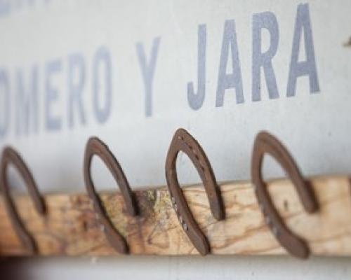 Imagen de CENTRO HÍPICO ROMERO Y JARA